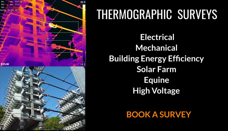 Thermography Experts
